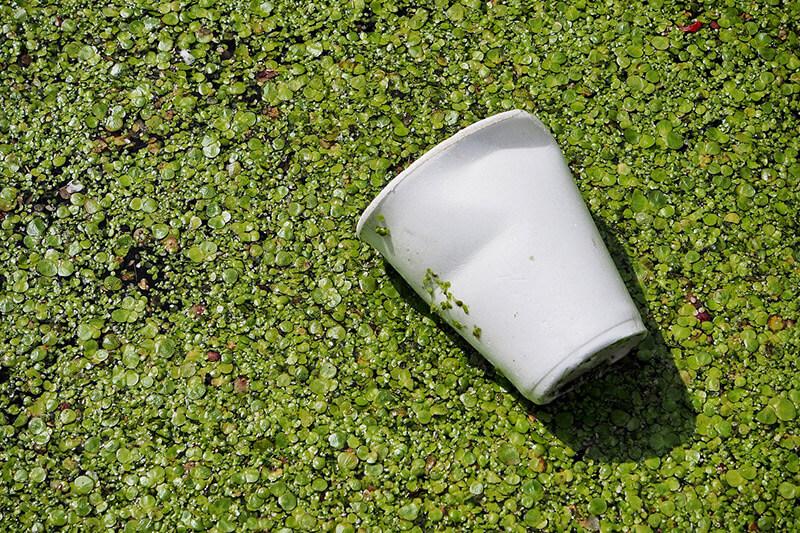 Reciclagem-e-polímeros-biodegradáveis
